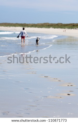 holiday beach with a walking unrecognizable woman and her dog in the background