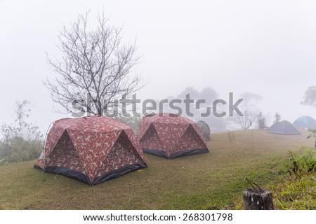 holiday camping around with fog  at  huinamdung chiangmai  thailand - stock photo