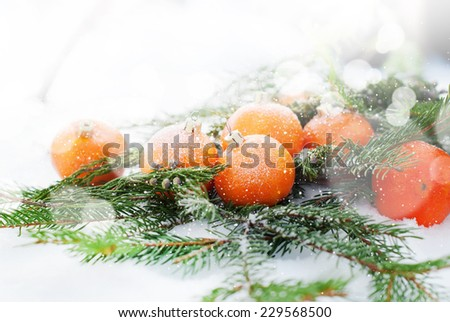 Holiday Card with Tangerines Decorated as Fir-tree Toy.  Branch of Coniferous on White Snow - stock photo