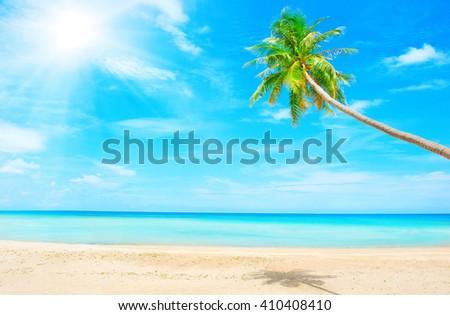 Holidays Background. Beautiful beach with palm tree over the sand - stock photo