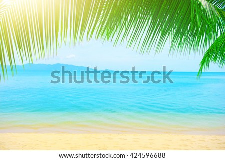Holidays Background. Palm tree leaves over luxury beach