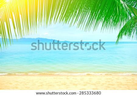 Holidays. Beautiful sea beach with palm tree - stock photo