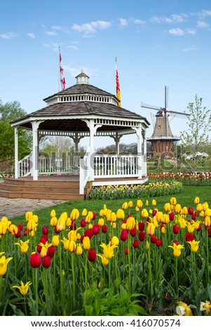 HOLLAND, MICHIGAN-MAY 07, 2015: A gazebo and an authentic wooden windmill from the Netherlands rises behind tulips in Holland Michigan at Springtime. - stock photo