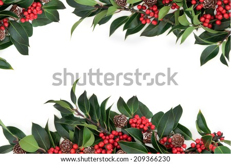 Holly background border decoration with red berries and pine cones over white background. - stock photo