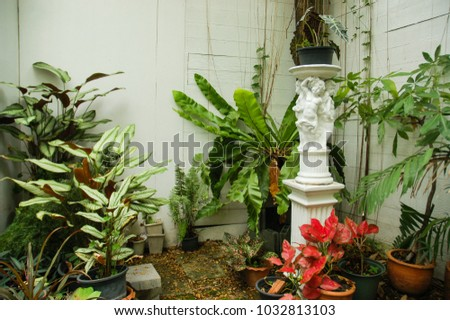 Home Garden Decoration, Relax Zone, Trees Make Oxygen. Space For Walk And  Sit
