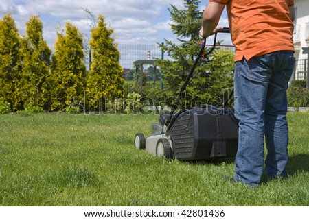 Home lawn mower cutting the grass