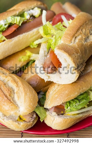 Home-made baguette sandwitches with sausage, shallow depth of field