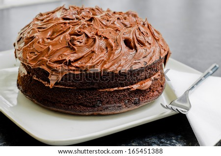 Home made Chocolate cake with lashings of chocolate icing. - stock photo