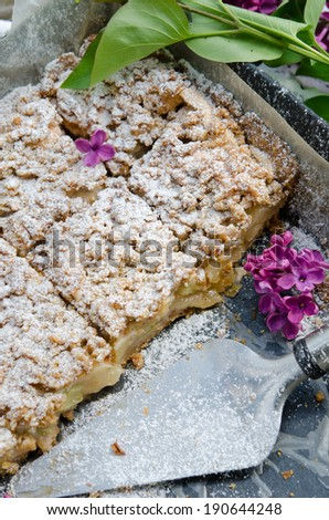 Home-made crumble pie with apples - stock photo