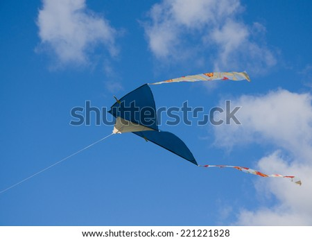 Home made kite Delta in midair fly