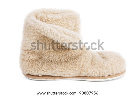 Home sneakers tovechey of hair on a white background - stock photo