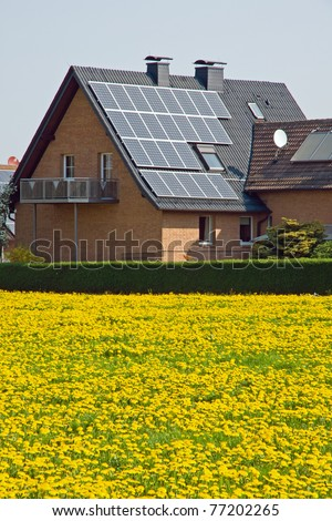 Home with solar panels and a meadow of dandelion - stock photo
