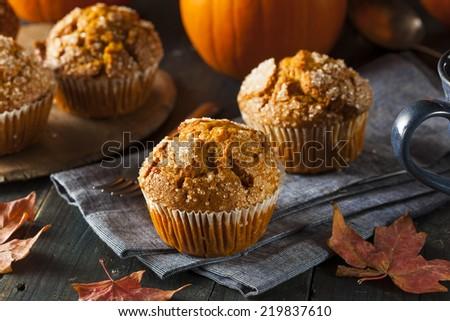 Homemade Autumn Pumpkin Muffin Ready to Eat - stock photo