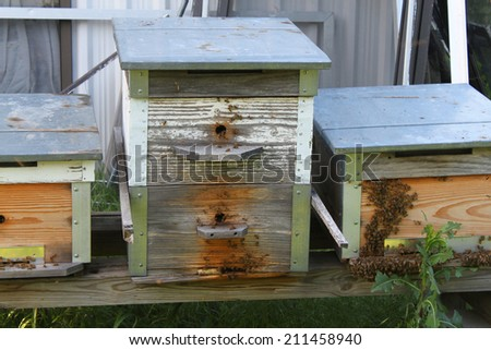 Homemade bee hives with bees around - stock photo