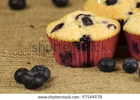 homemade blueberries muffins over hessian fabric and fruits around - stock photo