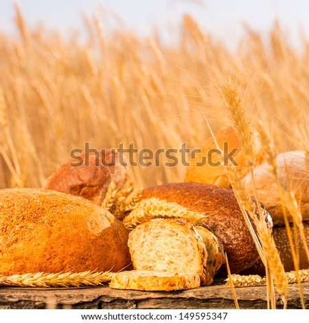 Homemade bread and wheat on the wooden table in autumn field