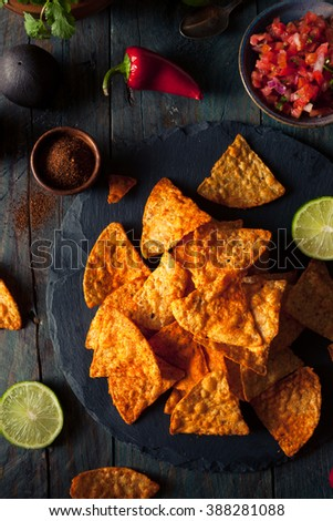 Homemade Chili Lime Tortilla Chips with Salsa - stock photo