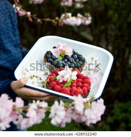 Homemade Chocolate Tarts with Berries - stock photo