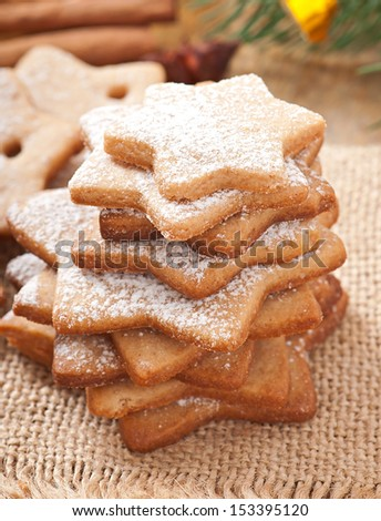 Homemade Christmas cookies sprinkled with powdered sugar - stock photo