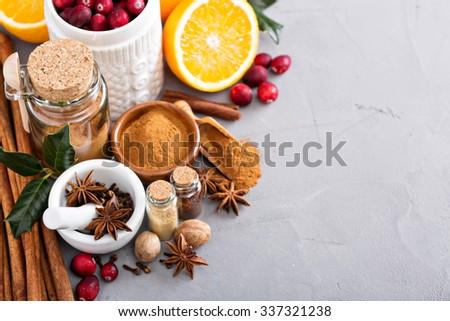 Homemade christmas mix of spices in a glass jar - stock photo
