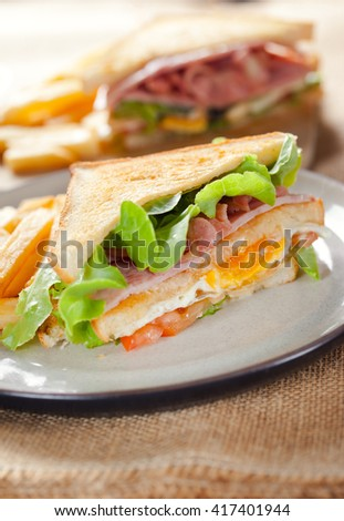 homemade club sandwich with french fries in plate