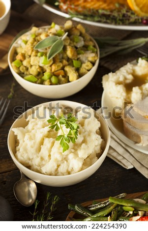 Homemade Creamy Mashed Potatoes in a Bowl - stock photo