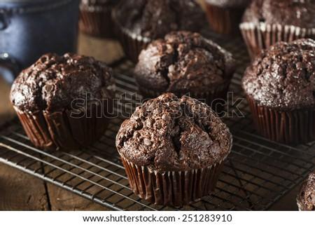 Homemade Dark Chocolate Muffins to Eat at Breakfast - stock photo