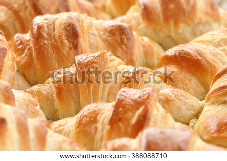 Homemade  French Croissants  - stock photo