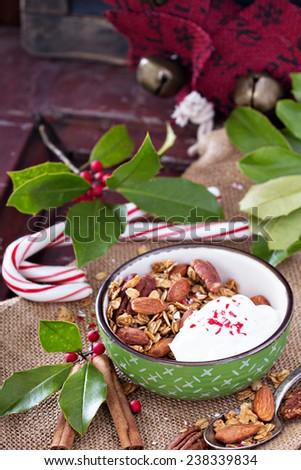 Homemade gingerbread granola for breakfast on Christmas morning - stock photo