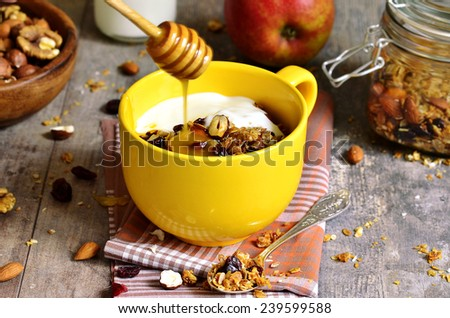 Homemade granola from several types cereals with nuts,coconut chips and dried cranberry - healthy breakfast. - stock photo