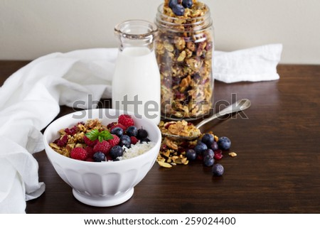 Homemade granola with berries and coconut flakes - stock photo