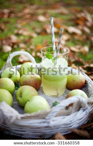 Homemade green juice made from fresh apples - stock photo