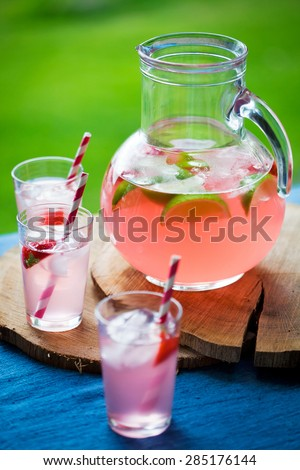 Homemade juice with red berries - stock photo