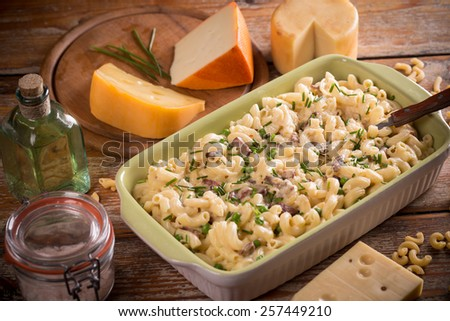Homemade macaroni and cheese in a bowl - stock photo