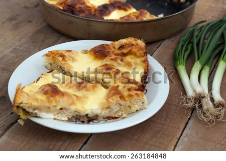 Homemade mushroom pie - stock photo