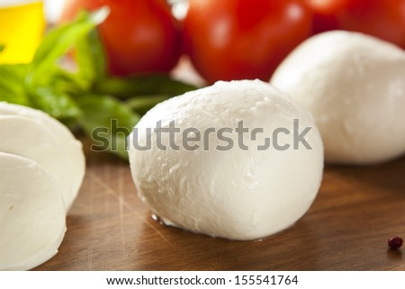 Homemade Organic Mozzarella Cheese with Tomato and Basil - stock photo