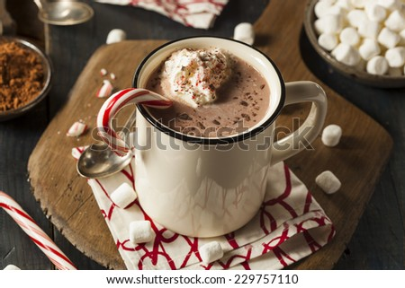 Homemade Peppermint Hot Chocolate with Whipped Cream - stock photo