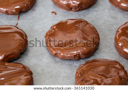 Homemade peppermint patties freshly dipped and glossy from the melted chocolate. - stock photo