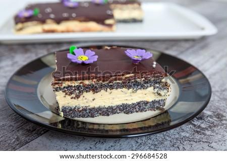 Homemade Poppy Seed Cake - stock photo