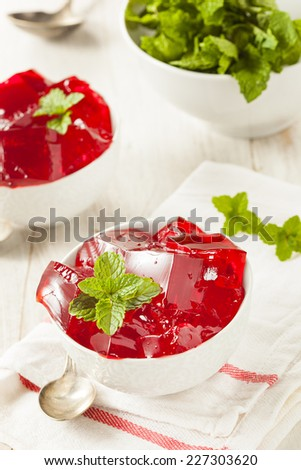 Homemade Red Cherry Gelatin Dessert in a Bowl - stock photo
