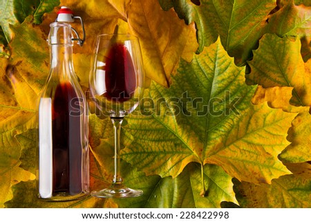 Homemade Red Wine on Autumn leafs - stock photo
