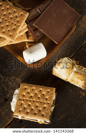 Homemade S'more with chocolate and marshmallow on a graham cracker - stock photo