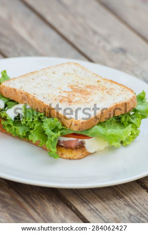 homemade sandwich on white plate