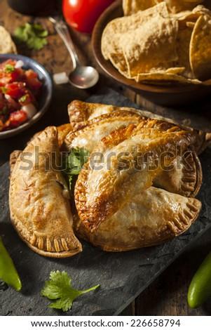 Homemade Stuffed Chicken Empanadas on a Background - stock photo