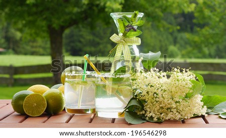 homemade summer drink of elderflower garnished with elderflower, lime, lemon; nice background shows natural garden - stock photo