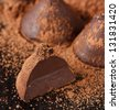 Homemade sweet chocolate truffle with cocoa powder. - stock photo