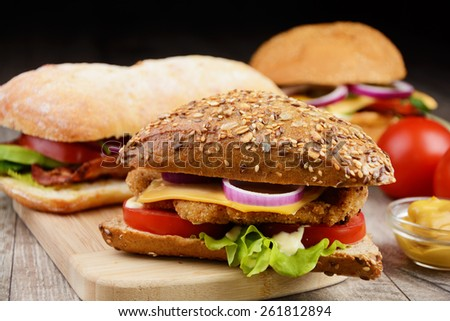 Homemade tasty sandwich with meat and vegetables - stock photo