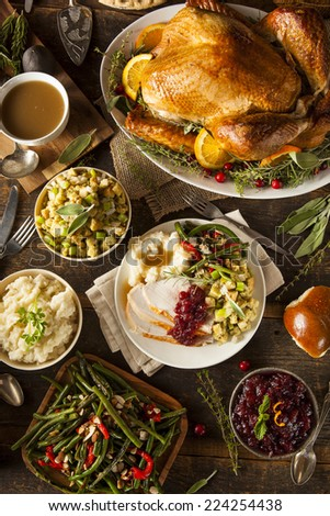 Homemade Thanksgiving Turkey on a Plate with Stuffing and Potatoes - stock photo