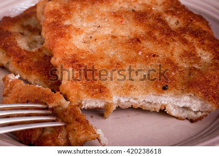 Homemade Wiener Schnitzel with Radish Salad. Viennese cutlet one of the most popular dishes in Austria and Germany.  - stock photo
