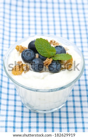 homemade yogurt with blueberries and muesli in a glass, close-up, vertical